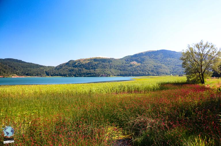 Yeşilin ve Mavinin Tüm Tonları Abant Gölü