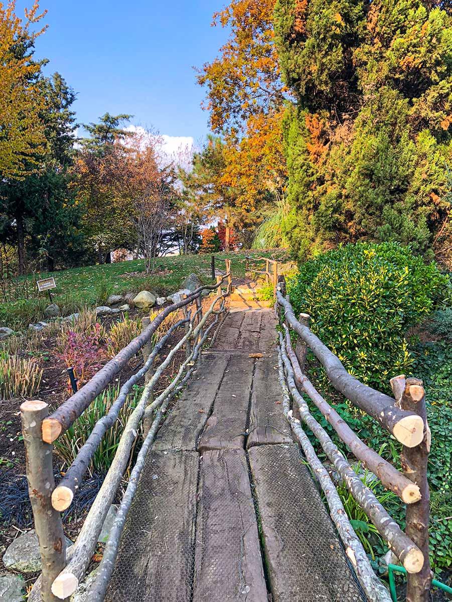 Botanik Bahçesi Merkez Ada