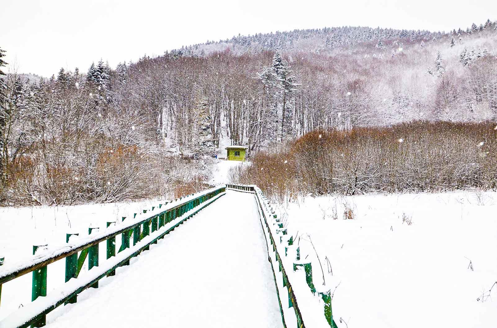 Karlarla kaplı tahta köprü.
